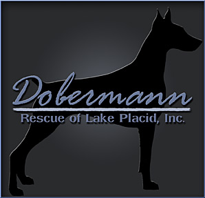Dobermann Rescue of Lake Placid Inc.